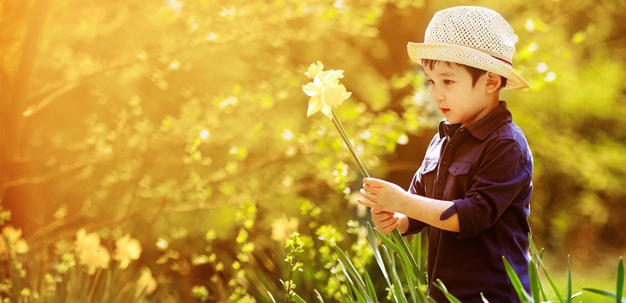 boy holding daffodil in field