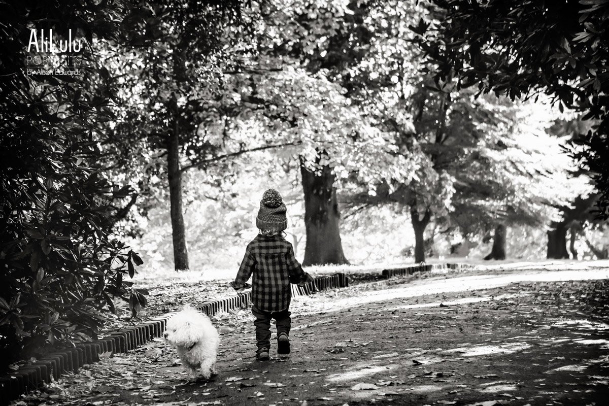 boy and family dog walking in park opposite directions